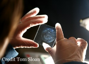 Hologram photo by Tom Sloan