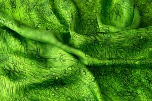 Green textile crubag